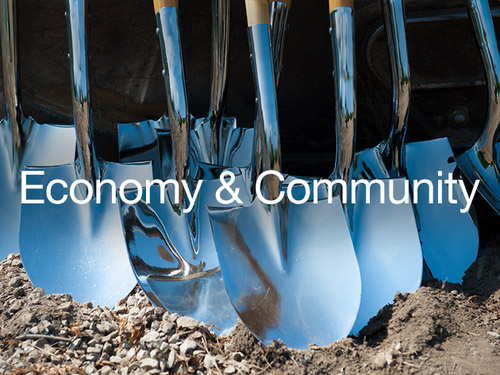 graphic for Sector of Economy and Community