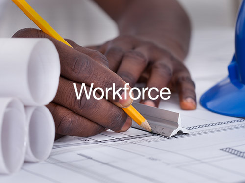 graphic for Sector of Workforce